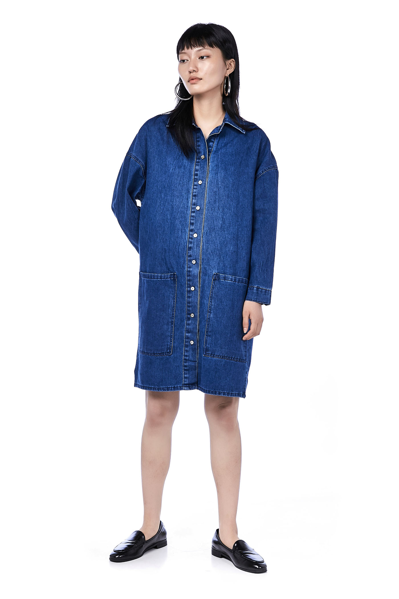 Delvy Denim Shirtdress