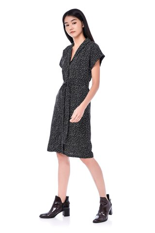 Alesia Shirtdress